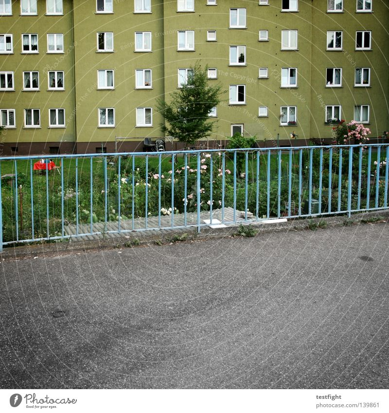 random rules Straße Leben Wiese Fenster Garten Architektur Wohnung Beton Aussicht Häusliches Leben Zaun Stadt Teer Altbau
