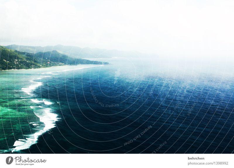 schaumschläger Ferien & Urlaub & Reisen Tourismus Ausflug Abenteuer Ferne Freiheit Sommerurlaub Frühling Wellen Küste Meer Indischer Ozean Insel Seychellen Mahé