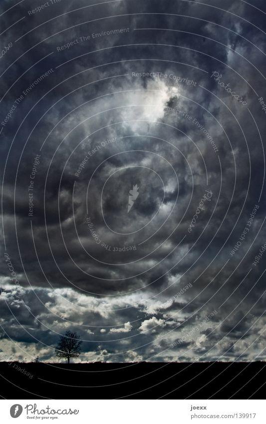 Es werde … Himmel Natur blau weiß Baum Wolken schwarz Landschaft dunkel Religion & Glaube träumen Horizont Hoffnung Symbole & Metaphern Unwetter