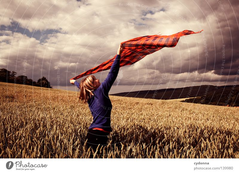 Im Wind tanzen lassen Frau Mensch Natur schön Himmel grün blau rot Sommer Wolken Leben Wiese Gras Bewegung Haare & Frisuren Wärme
