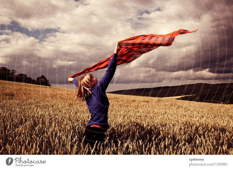 Im Wind tanzen lassen ländlich Landwirtschaft Landleben Leben Wiese Weide Feld Landschaft Landschaftsformen Himmel grün Natur Spaziergang Luft Physik Wärme
