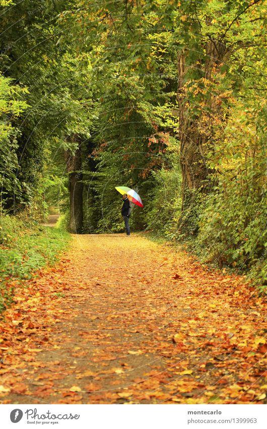 ...ich warte Mensch feminin Frau Erwachsene 1 30-45 Jahre Umwelt Natur Pflanze Urelemente Erde Herbst Klima Wetter schlechtes Wetter Sträucher Grünpflanze