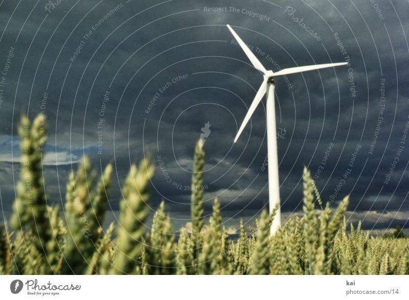 Windrad01 Wolken Feld Getreide Windkraftanlage Landwirtschaft Ähren Getreidefeld