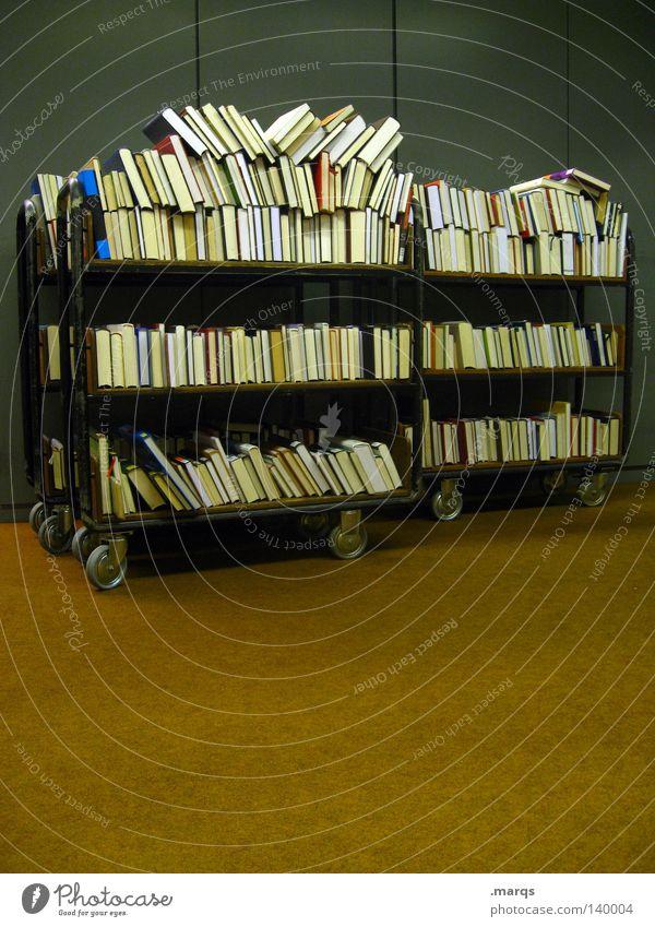 300 | Bücher Buch Bibliothek Wissen Wissenschaften Studium Mobilität sortieren sehr viele Reihe aufgereiht Handwagen Textfreiraum unten Innenaufnahme Lesesaal