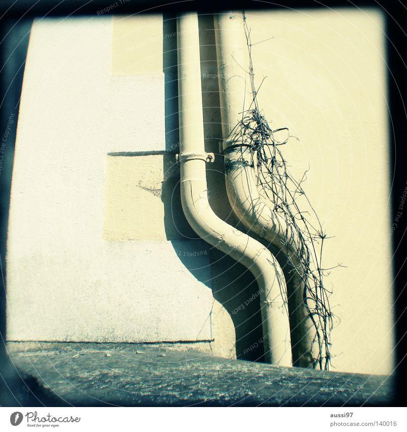 ttv Wasser Angst Häusliches Leben Konzentration analog Röhren Regenwasser Raster parallel Sucher schemenhaft Brennpunkt Lichtschacht