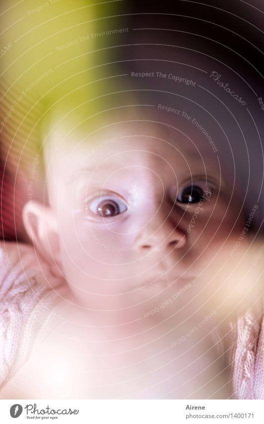 große Augen machen Mensch Baby Kindheit Kopf 1 0-12 Monate liegen Blick Neugier niedlich rosa Lebensfreude Farbfoto Innenaufnahme Textfreiraum oben