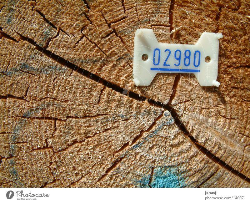 Holznummer Ziffern & Zahlen Dinge Statue zählen gefallen