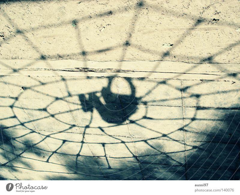 Aracs Spinne Spielplatz Extremsport Spinnenetz Bewegungsdrang Superhelden Netz Spider schwarze Witwe