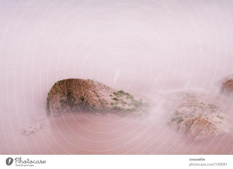 smoky rocks weiß Meer Strand Leben Sand hell Wellen Nebel Felsen Wachstum Frieden Algen Stativ