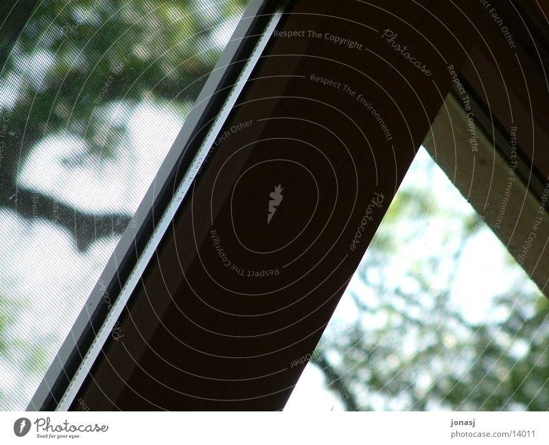 Fensterrahmen Umwelt Gitter dunkel Dinge hell Kontrast Außenaufnahme