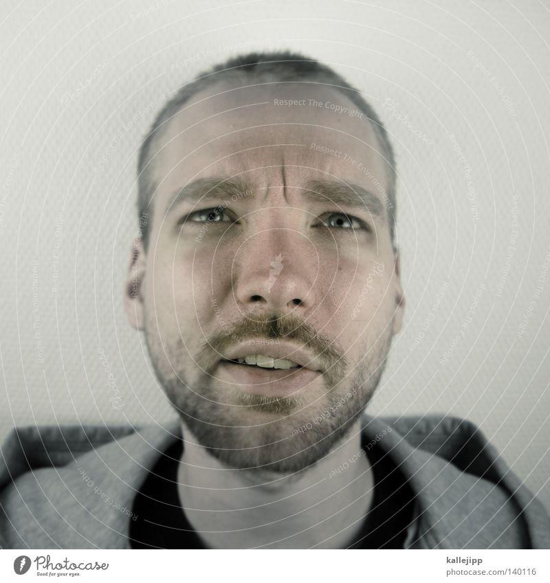 passfoto Mann Mensch Porträt Fragen Gesicht Bart Haare & Frisuren Blick entdecken Gefühle Nase Mund Zähne Haut Ohr question ? 20 - 30 jahre nose kallejipp