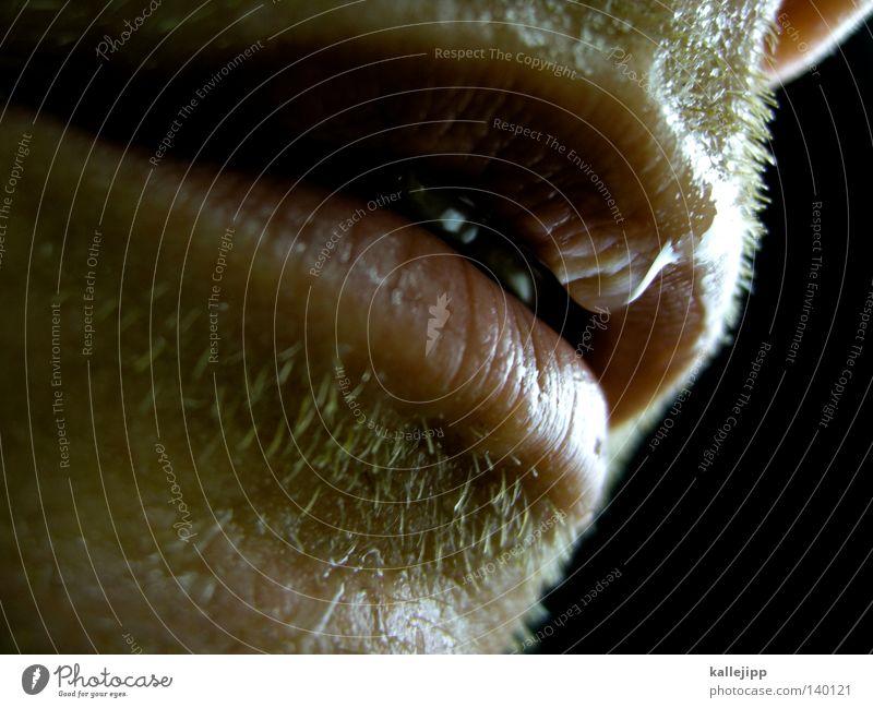 gesättigt Mann Bart Schweiß transpirieren feucht Körperflüssigkeit Wassertropfen Tropfen Lippen trinken Durst durstig Oberlippe Unterlippe nah Mensch Kosmetik