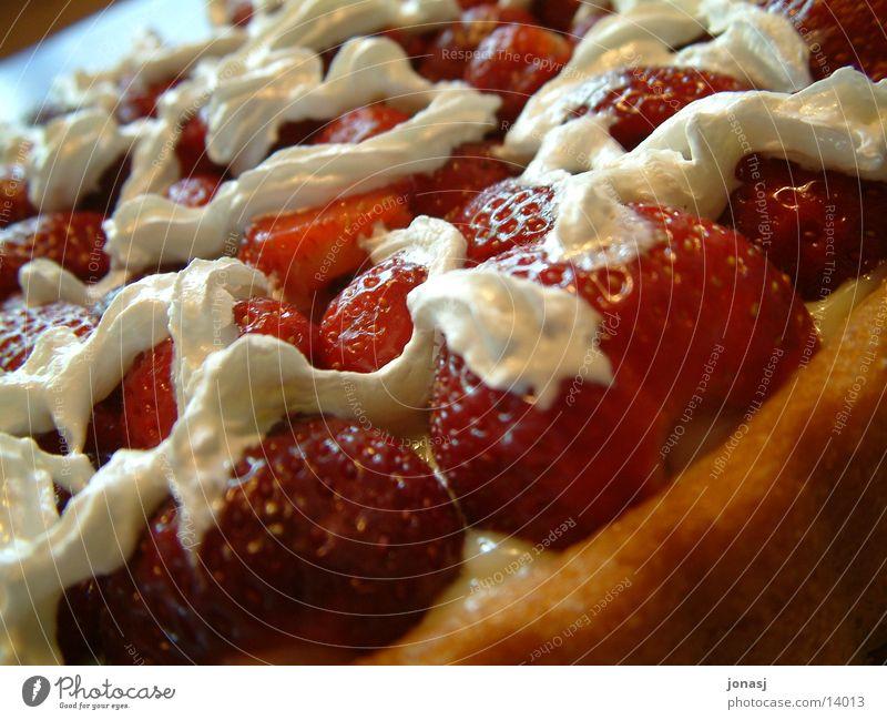 Erdbeerkuchen Kuchen Torte rot Sahne süß Ernährung Geburtstag Tortenboden Freude Feste & Feiern kochen & garen
