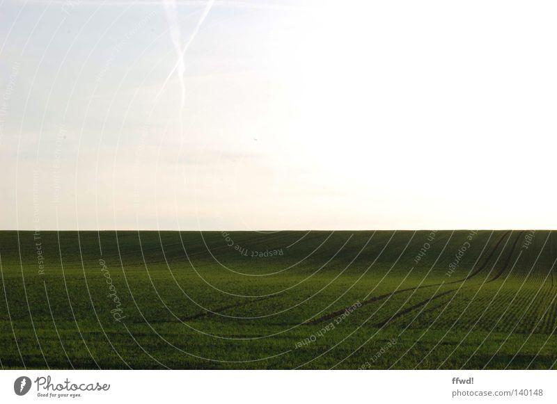 simplicity Natur Himmel weiß grün Wiese Gras Wege & Pfade Landschaft Linie Feld Wellen Horizont trist weich Frieden einfach