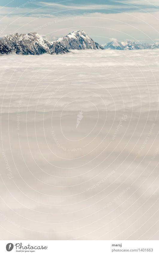 Federleichte Decke Natur Herbst Schönes Wetter Nebel Felsen Alpen Berge u. Gebirge Gipfel Schneebedeckte Gipfel Erholung Unendlichkeit sanft Nebelmeer Farbfoto