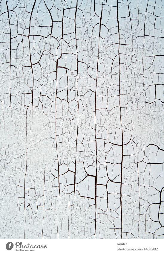Zeitfaktor alt Vergänglichkeit Wandel & Veränderung trocken Kunststoff Spuren Teile u. Stücke verfallen Verfall Riss Zerstörung Kunstwerk Krise Schaden