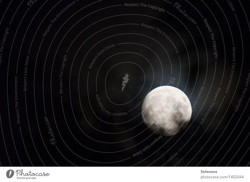 voll Natur dunkel Umwelt Mond Nachthimmel Mondschein Vollmond Mondlandschaft Mondaufgang