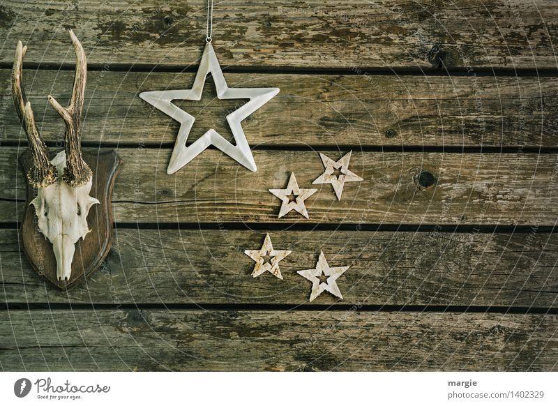 Frohe Weihnachten III Wohnung Dekoration & Verzierung Tier Wildtier Reh Hirsche Elch Horn Stern (Symbol) Holz braun grün silber weiß Weihnachten & Advent