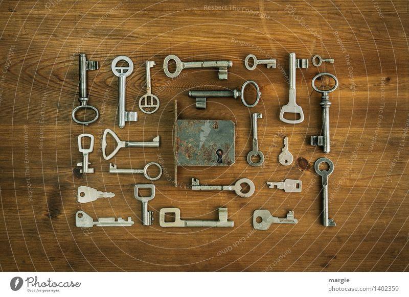 Qual der Wahl: Viele unterschiedliche Schlüssel sind um ein Tür - Schloss geordnet Schlosser Sicherheit Sicherheitsdienst Technik & Technologie Türschloss