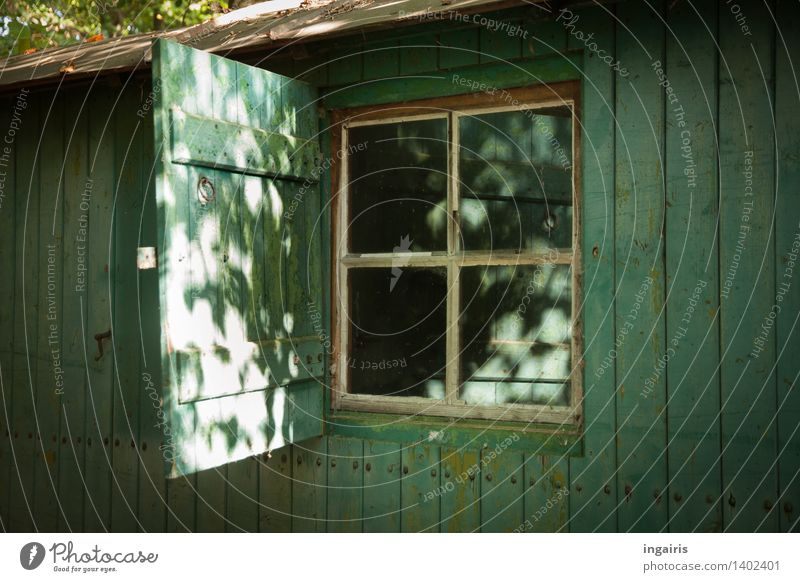 Rustikaler Bauwagen Wald Haus Hütte Gebäude Fenster Fensterladen Holzhaus glänzend leuchten Häusliches Leben alt einfach blau grau grün weiß Stimmung