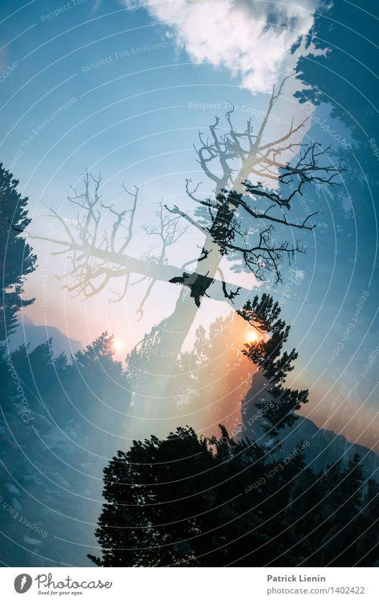 Dreamscape (4) Wohlgefühl Zufriedenheit Sinnesorgane Erholung Ferien & Urlaub & Reisen Ausflug Abenteuer Ferne Freiheit Sommer Berge u. Gebirge Umwelt Natur