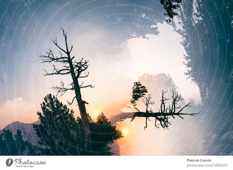 90 Grad Himmel Natur Ferien & Urlaub & Reisen Pflanze Sommer Baum Erholung Landschaft Wolken Ferne Wald Berge u. Gebirge Umwelt Freiheit Wetter Zufriedenheit