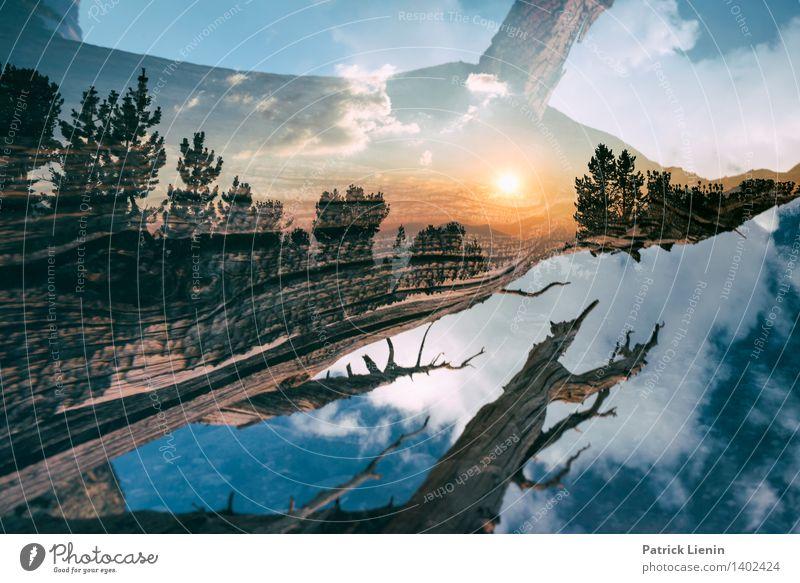 Baumwelt Himmel Natur Ferien & Urlaub & Reisen Pflanze Sommer Erholung Wolken ruhig Ferne Wald Berge u. Gebirge Umwelt Tourismus Zufriedenheit Erde ästhetisch