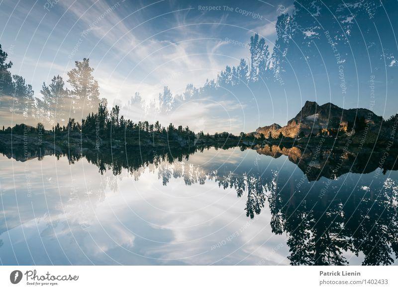 Different Dimension Himmel Natur Ferien & Urlaub & Reisen Pflanze Wasser Baum Erholung Landschaft Wolken ruhig Ferne Wald Berge u. Gebirge Umwelt Küste Freiheit