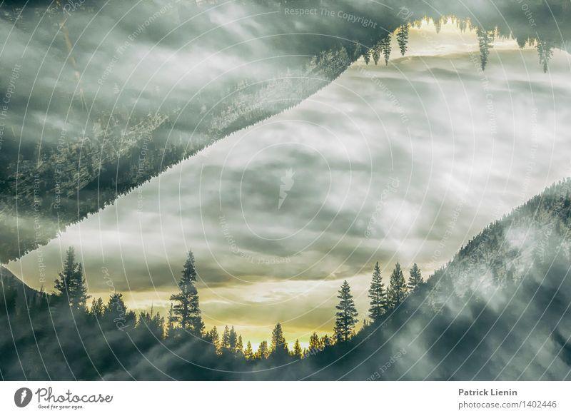 Different Horizon Himmel Natur Pflanze Sommer Sonne Erholung Landschaft Ferne Wald Berge u. Gebirge Umwelt Freiheit See Zufriedenheit Wetter Wellen