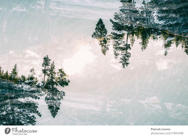 verdreht Leben harmonisch Wohlgefühl Zufriedenheit Erholung ruhig Meditation Umwelt Natur Landschaft Urelemente Wolken Sommer Klima Wetter Schönes Wetter
