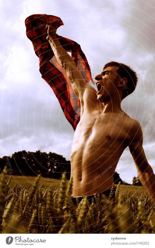 Unbedenklich Mensch Mann Natur Jugendliche schön Himmel grün blau rot Sommer Freude Wolken Leben Wiese Gefühle Gras