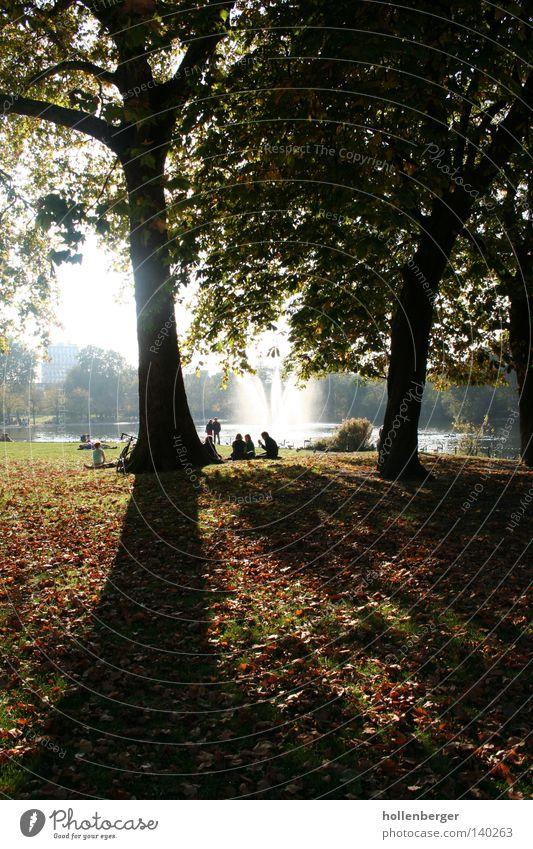 Schattenseite Freundlichkeit dunkel Herbst kalt Baum Park Springbrunnen Wasserfontäne Wiese Herbstlaub grün orange ruhig Gegenlicht entgegenkommen Victoriapark