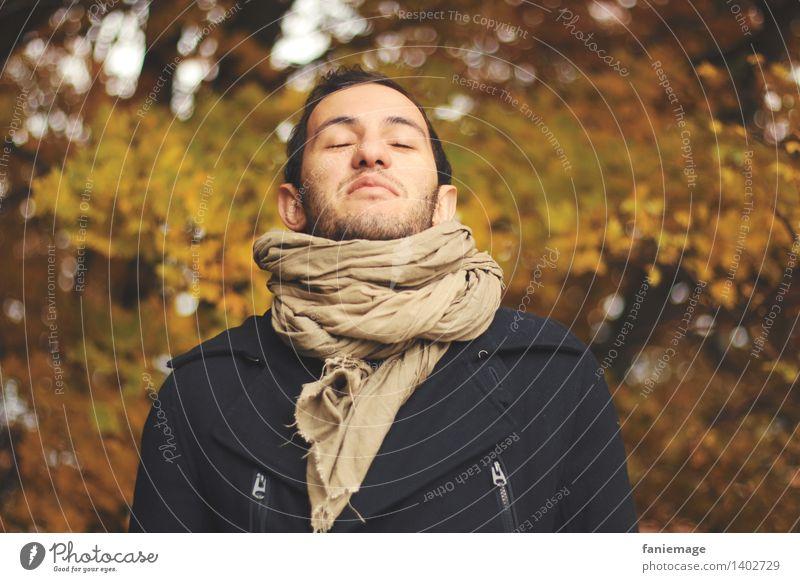 Respire Mensch Natur Jugendliche Mann schön Erholung Junger Mann 18-30 Jahre Wald Gesicht Erwachsene Herbst Glück braun träumen maskulin