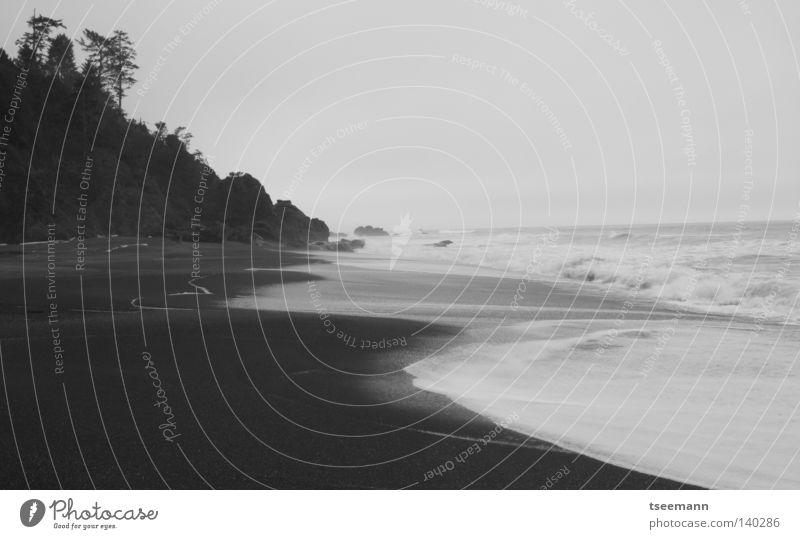 Mittelerde...hereinspaziert... Wasser Himmel weiß Meer Strand schwarz Wolken Einsamkeit Ferne Wald Sand Wellen Küste USA Sandstrand