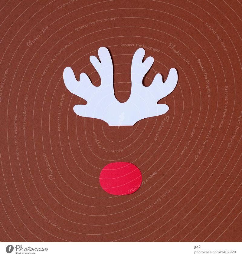 Rudolf Freizeit & Hobby Basteln Weihnachten & Advent Tier Rentier Nase Horn 1 Papier einfach niedlich braun rot weiß Vorfreude Design Kreativität Farbfoto
