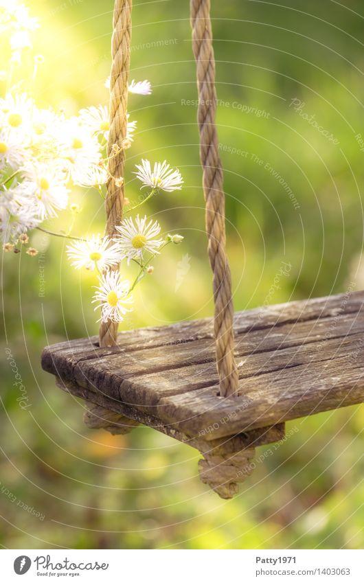 alte Schaukel Freizeit & Hobby Spielen Blume schaukeln Freude Fröhlichkeit Lebensfreude Romantik Zufriedenheit Idylle Außenaufnahme Morgen
