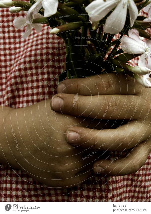 floristin II Mensch Kind Hand Mädchen Blume Wiese Garten Religion & Glaube Geburtstag Finger Geschenk Kirche stoppen Kindheit festhalten Löwenzahn