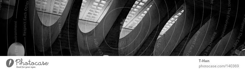 Perfekte Elipse Bahnhof perfekt Schweiz Zürich Zug Licht dunkel Architektur Leben Design Gleise