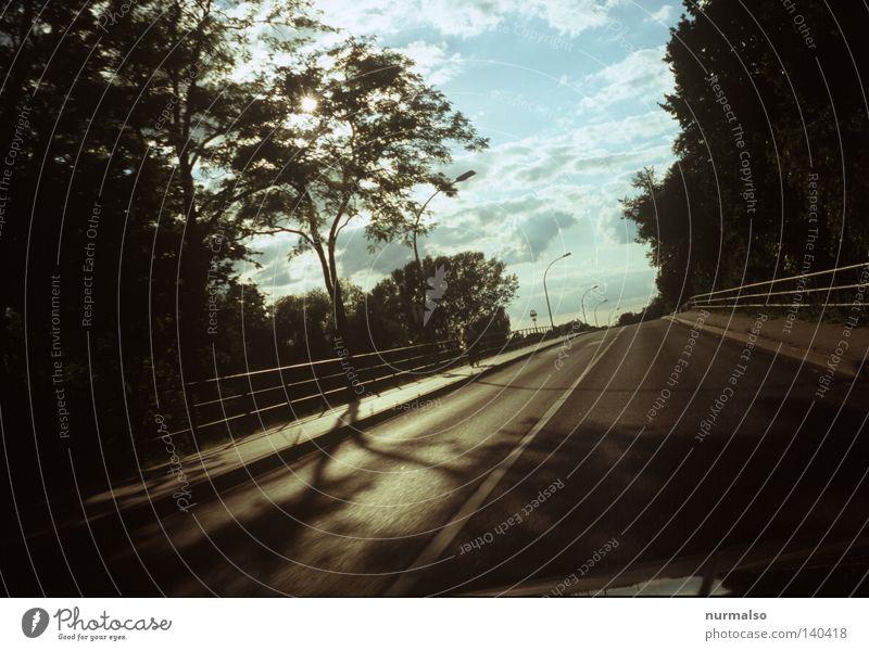Fahrt in den Morgen fahren KFZ Licht Straße Baum Brückengeländer Geländer gold schön Wege & Pfade Ziel Reisefotografie Ferien & Urlaub & Reisen Motorhaube