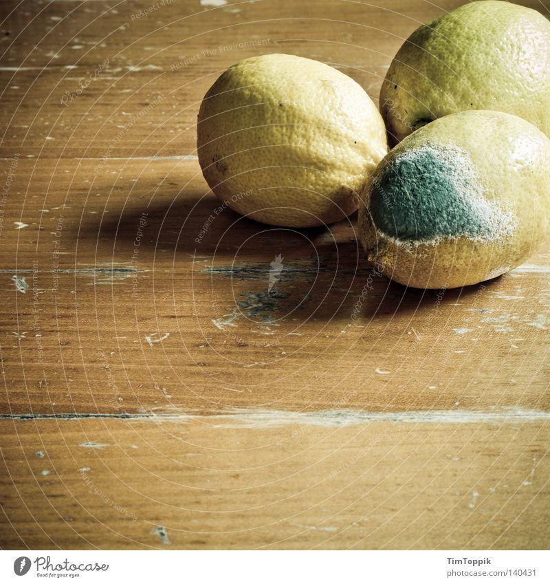 Integrationsgruppe Zitrone verdorben verrotten verfaulen abgelaufen Zitrusfrüchte sozial Tisch Holztisch Vergänglichkeit Küche Ernährung Frucht Schimmelpilze