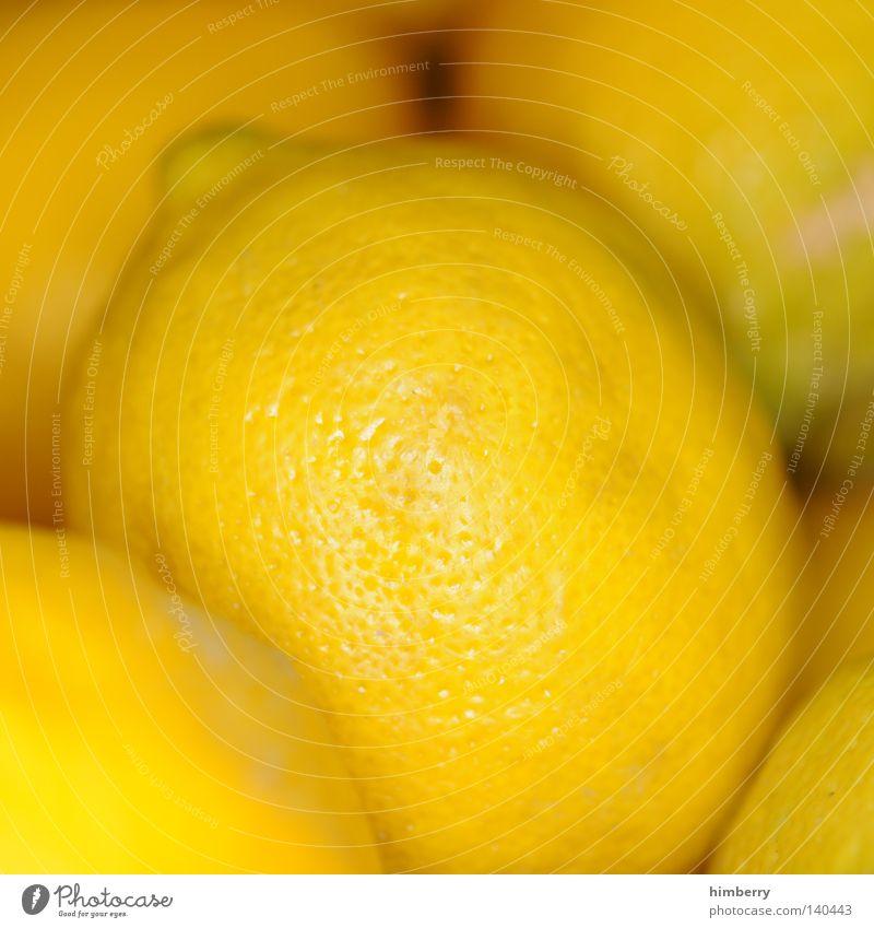 fruchtiche zitrone Zitrone sauer Frucht Vitamin Vitamin C Gesundheit Zutaten gelb fokussieren Perspektive Ernte Ernährung Lebensmittel Schalen & Schüsseln