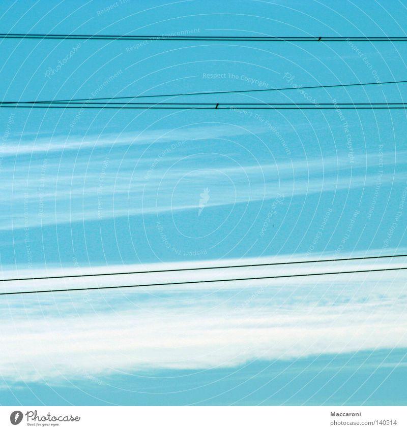 Himmlich Sommer Industrie Energiewirtschaft Musiknoten Himmel Wolken schlechtes Wetter Autofahren Vogel Geschwindigkeit weich blau Langeweile Stahlkabel
