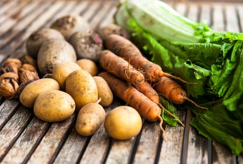 Herbsternte Natur grün Gesunde Ernährung rot natürlich Holz Lebensmittel braun orange authentisch Landwirtschaft Gemüse Ernte Forstwirtschaft