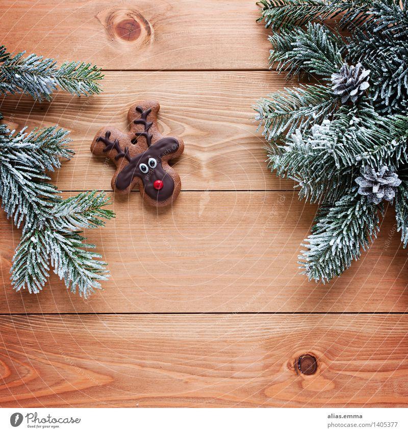 Rudi :) Weihnachten & Advent Tier Feste & Feiern braun Wildtier niedlich süß Süßwaren Backwaren Teigwaren