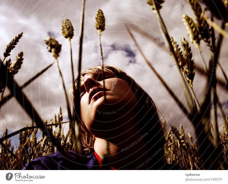 Im Gleichklang Frau Mensch Natur Mädchen schön Himmel grün Sommer Wolken Leben Wiese Gras Bewegung Haare & Frisuren Wärme Landschaft