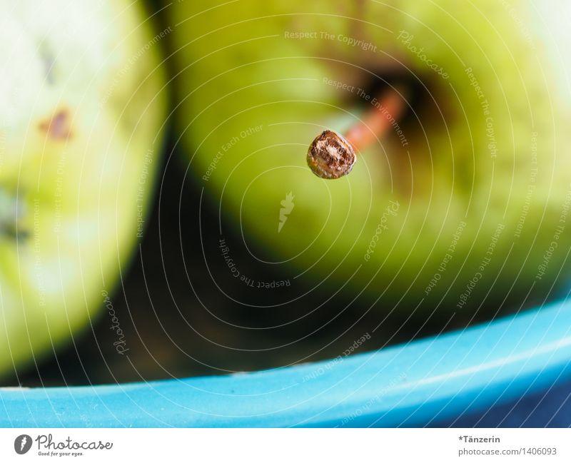 frisch vom Baum Lebensmittel Apfel Bioprodukte Vegetarische Ernährung Schalen & Schüsseln Natur Gesundheit natürlich grün Gedeckte Farben mehrfarbig