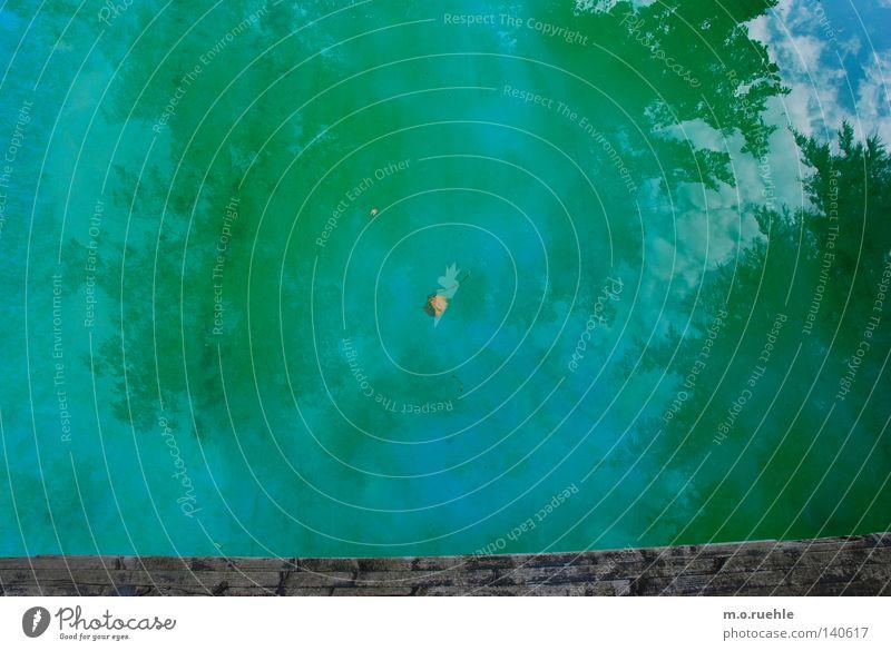 wasserfarbe Himmel grün blau Sommer Schwimmbad Vergänglichkeit Baumkrone Spiegelbild Wasserfarbe Wildpark Sommerfarbe