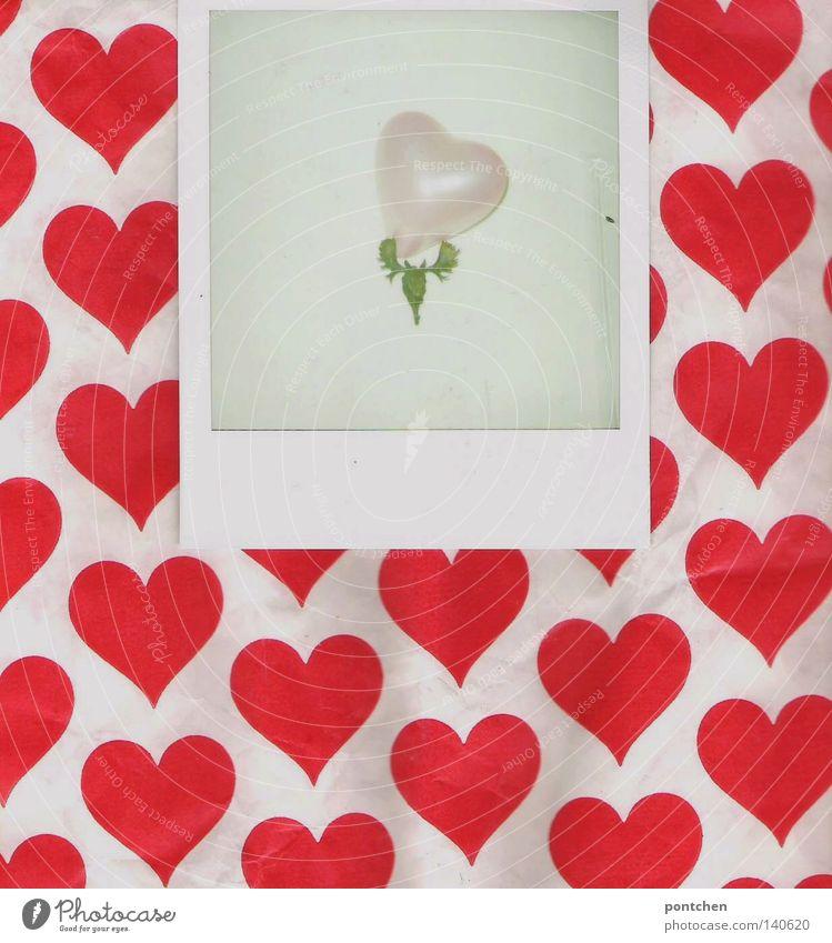 Kitsch. Liebe, romantik, Herzen. Polaroid liegt auf Papier mit Herzmuster und zeigt ein Geweih mit einem herzluftballon Valentinstag Luftballon Zeichen rosa rot