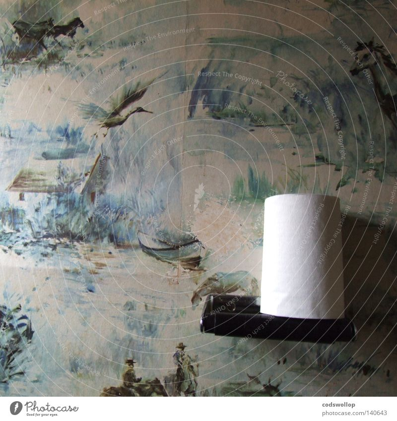 national park Haus Bad Wissenschaften Toilette England schick Siebziger Jahre Storch Provence Vogel Camargue State House