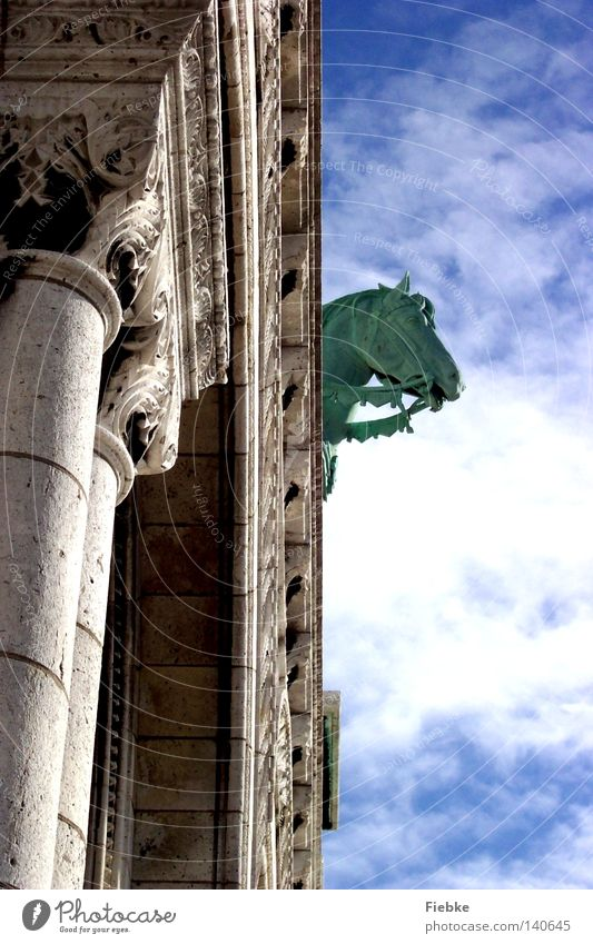Oh Fallada Himmel alt blau weiß Sommer Wolken Tier Architektur Kopf Stein Religion & Glaube Kunst Ordnung Kirche Europa
